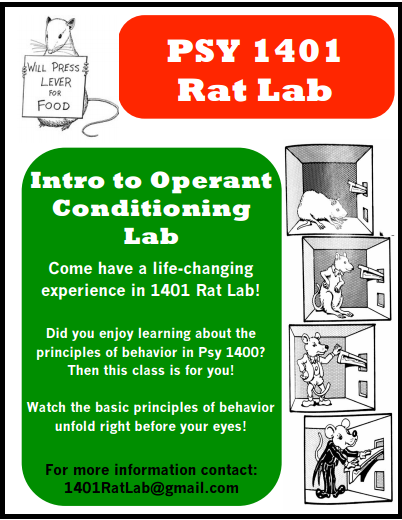 rat lab final 2